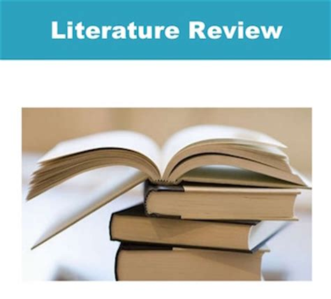 Knowledge gaps in literature review book